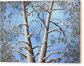 White Fir Tree Wood Print by Ron  Markowitz