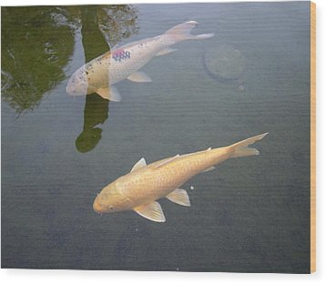 White Fish Yellow Fish Wood Print by Val Oconnor
