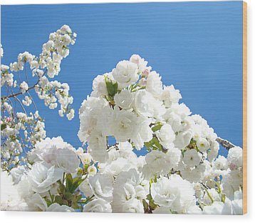 White Floral Blossoms Art Prints Spring Tree Blue Sky Wood Print by Baslee Troutman