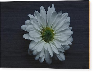 White Flower 1 Wood Print by Ron Smith