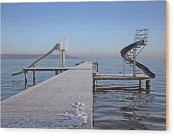 White Frost Slide Wood Print by Ralf Kaiser
