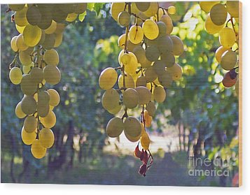 White Grapes Wood Print by Barbara McMahon