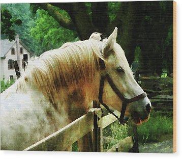 White Horse Closeup Wood Print by Susan Savad