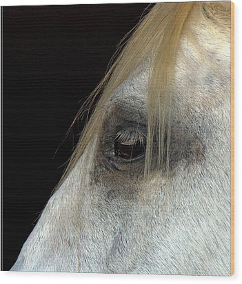 White Horse Wood Print by Marmimuralla