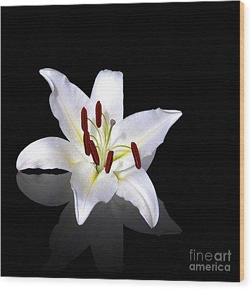 White Lily Wood Print by Jane Rix