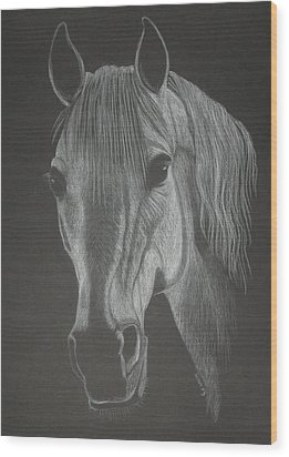 White Mare Wood Print by Stephanie L Carr