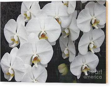 Wood Print featuring the photograph White Orchids by Debbie Hart