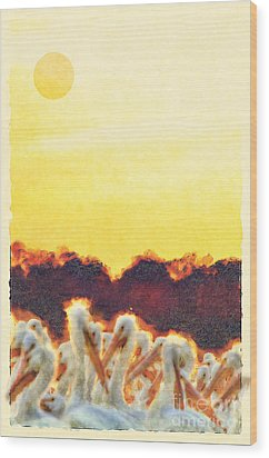 Wood Print featuring the photograph White Pelicans In Sun by Dan Friend