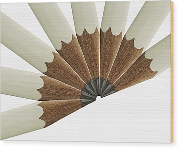 White Pencil Fan Wood Print by Blink Images