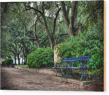 White Point Gardens Bench Wood Print by Jenny Ellen Photography