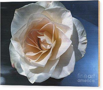 White Rose Wood Print by Addie Hocynec
