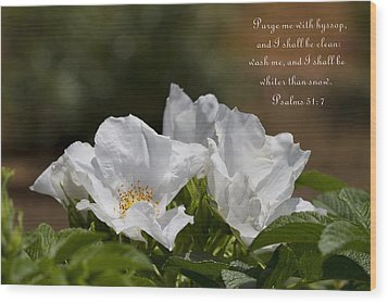 White Roses - Purge Me With Hyssop Wood Print by Kathy Clark