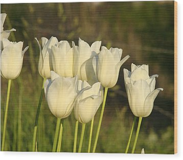 White Tulip Flowers Art Prints Spring Green Garden Wood Print by Baslee Troutman