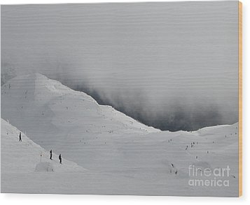 Whiteout Whistler Wood Print by Don F  Bradford