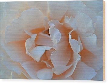 Whitest Rose Wood Print by Naomi Berhane