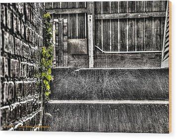 Who'll Stop The Rain Wood Print by Dan Crosby