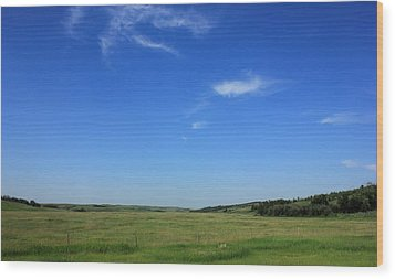 Wide Open Alberta Prairies Wood Print by Jim Sauchyn