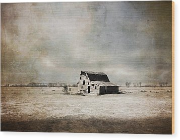 Wide Open Spaces Wood Print by Julie Hamilton
