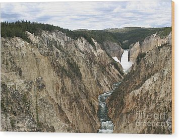 Wood Print featuring the photograph Wide View Of The Lower Falls In Yellowstone by Living Color Photography Lorraine Lynch