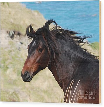 Wild And Free Wood Print by Johanne Peale