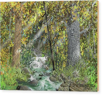 Wood Print featuring the drawing Wild Creek - October by Jim Hubbard
