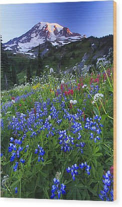 Wild Flowers In The Rainier National Park Wood Print by Gavriel Jecan