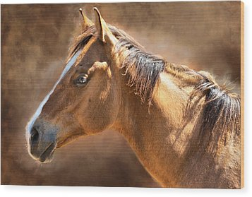 Wood Print featuring the digital art Wild Mustang by Mary Almond