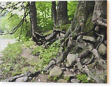 Wild Roots Wood Print
