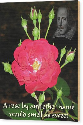 Wild Rose And The Bard Wood Print by Terry Lynch
