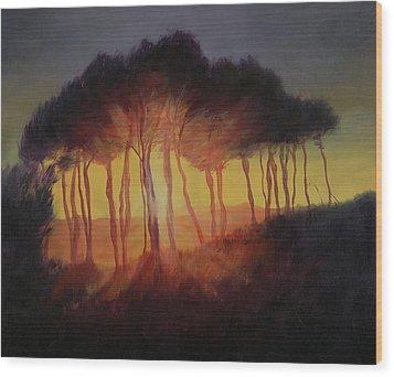 Wild Trees At Sunset Wood Print by Antonia Myatt