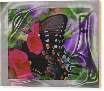 Wild Wings Butterfly Wood Print by Debra     Vatalaro