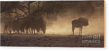 Wood Print featuring the photograph Wildebeests In The Dust - Botswana by Craig Lovell