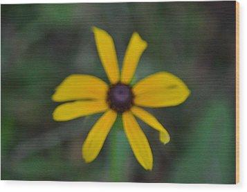 Wildflower Wood Print by Mark Stidham