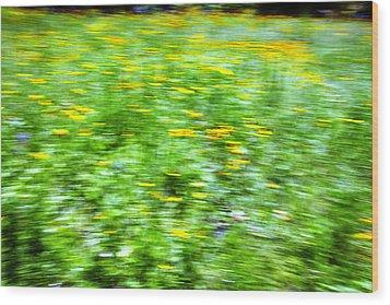 Wildflowers And Wind 2 Wood Print by Skip Nall