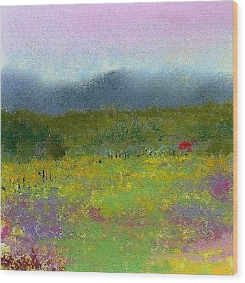 Wildflowers Wood Print by David Patterson