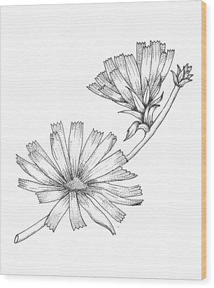 Wildflowers Wood Print by Marci Mongelli