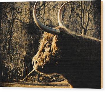 Wildthings Wood Print by Jessica Brawley