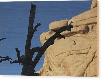 Will Desert Give Life Wood Print by Carolina Liechtenstein