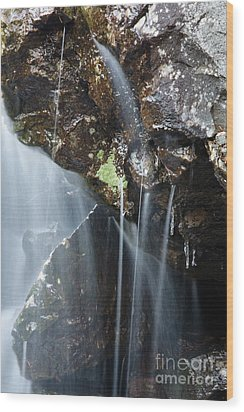 Willey Brook - White Mountains New Hampshire  Wood Print by Erin Paul Donovan