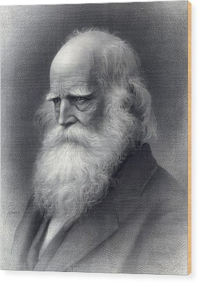 William Cullen Bryant 1794-1878 Was An Wood Print by Everett