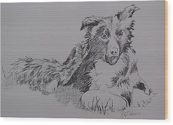 Willow And Frisbee Wood Print by Ramona Kraemer-Dobson