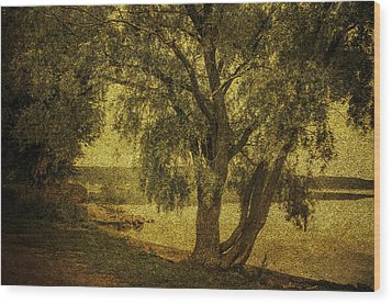 Willow At The Lake. Golden Green Series Wood Print by Jenny Rainbow