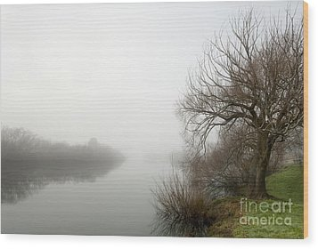Willow In Fog Wood Print by David Lade