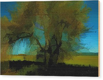 Willow Tree Wood Print by Bonnie Bruno