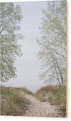 Wilmette Park Evanston Illinois Wood Print by Loriannah Hespe