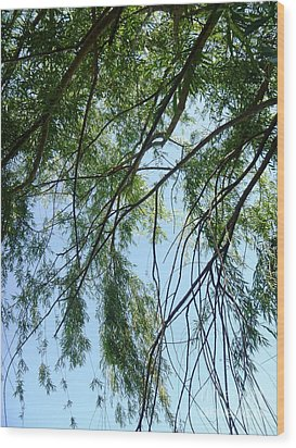 Wind In The Willow Wood Print by Alys Caviness-Gober