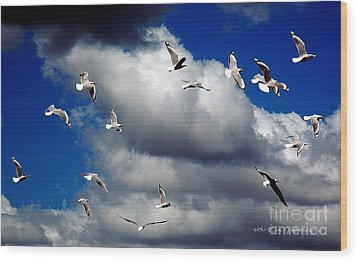Wood Print featuring the photograph Wind Sailing Seagulls by Vicki Ferrari