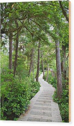 Winding Path Wood Print by Ivan SABO