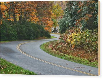 Wood Print featuring the photograph Winding Road by Joan Bertucci