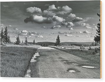 Wood Print featuring the photograph Winding Road by Mary Almond